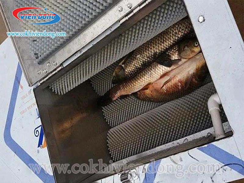 máy đánh vảy cá Viễn Đông